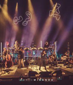 El clásico del pop español, Manolo García, incluye el Handpan en su gira acústica 2019